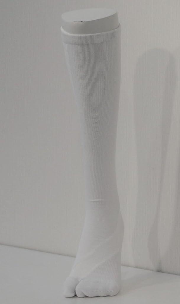 化合物美徳陽気なさとう式 フレクサーソックス ハイソックス 白 (S) 足袋型