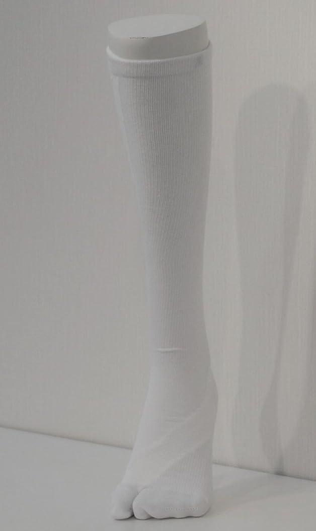モーター全体に未満さとう式 フレクサーソックス ハイソックス 白 (S) 足袋型