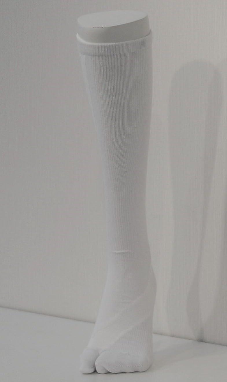 信頼できる米国請願者さとう式 フレクサーソックス ハイソックス 白 (S) 足袋型