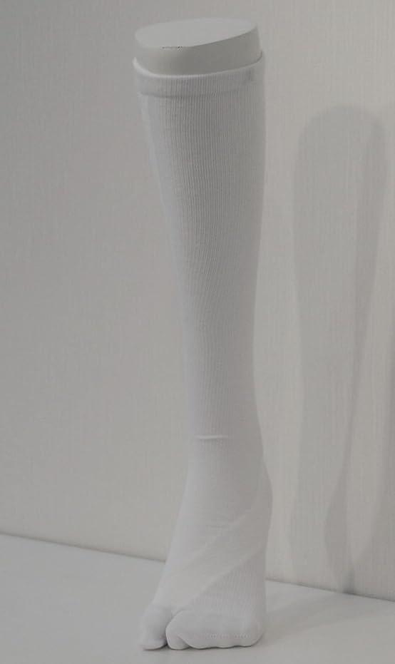 マスタードリスク形容詞さとう式 フレクサーソックス ハイソックス 白 (M) 足袋型