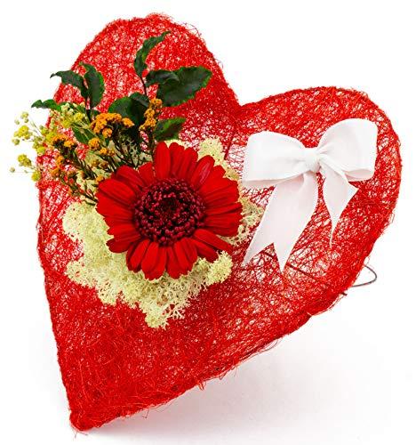 Pure Difference - Echte Konservierte Infinity Gerbera in Rot auf rotem Deko Herz zum aufstellen - Blumenstrauß mit Liebe handgefertigt - Ewig blühende Freude als Geschenk - Mind. 3 Jahre haltbar