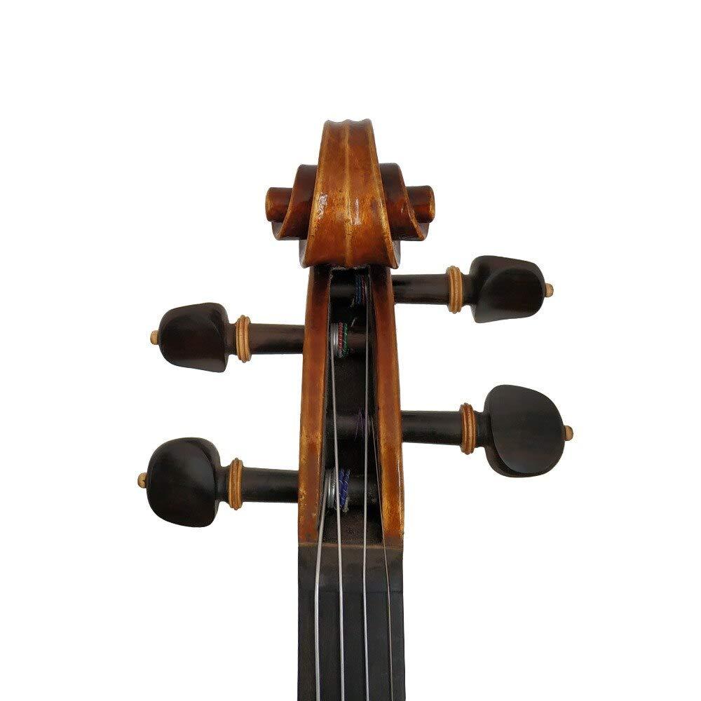 WENZBAWX Copiar Stradivarius 1716 Barniz de aceite hecho a mano Madera de violín con estuche de espuma y arco: Amazon.es: Instrumentos musicales