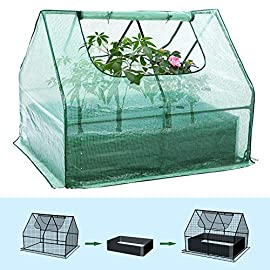 Taleco Gear Raised Garden Bed,Planter Box with Greenhouse,Protected Cover with 2 Large Windows for Garden,Patio,Backyard… 8 【Dual Use Raised Bed】Use the raised garden bed with Greenhouse to keep plants warm and growing in winter and spring. It can protect your plants from too much heat or cold, shield plants from dust and gale, and help to keep out animal. 【Flexible Use】Depending on what you need, you can move, fold and save the planter box any time. Since the greenhouse is moveable, you can use it in winter to keep heat in, or move out in summer to keep plants growing. And the garden planter can be relocated indoors and outdoors. 【2 Large Window】The 2 large windows on both sides respectively can be rolled up easily,completely vent in spring and summer, let more sunlight in, provide easy access to your plant and allows air flowing through on hot days, and easy to water them from two sides.