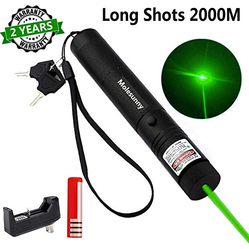 Molesunny Green Light Pointer High Power Visible Beam with Adjustable Focus for Hunting Hiking Mini Flashlight Interactive Light Entertain and Train Your Cat Kitten Dog Pet