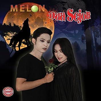 Melon Dua Sejoli
