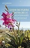 Guide des fleurs sauvages de Méditerranée occidentale