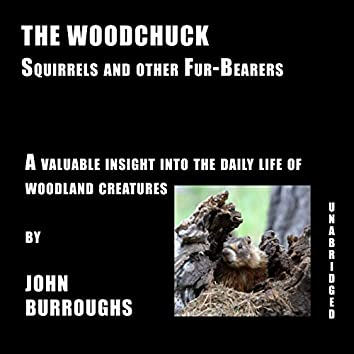 The Woodchuck (Unabridged), a valuable insight into the daily life of woodland creatures, by John Burroughs