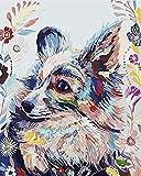 HAO Pintura al óleo DIY por números Pintura por número para decoración del hogar para Sala de Estar Perro Colorido 40x50cm Sin Marco