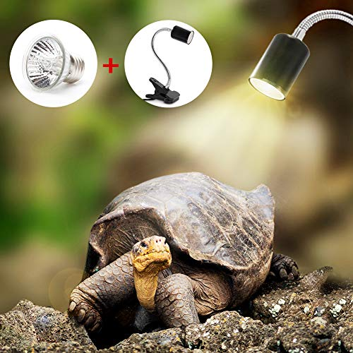 humidificador para tortugas
