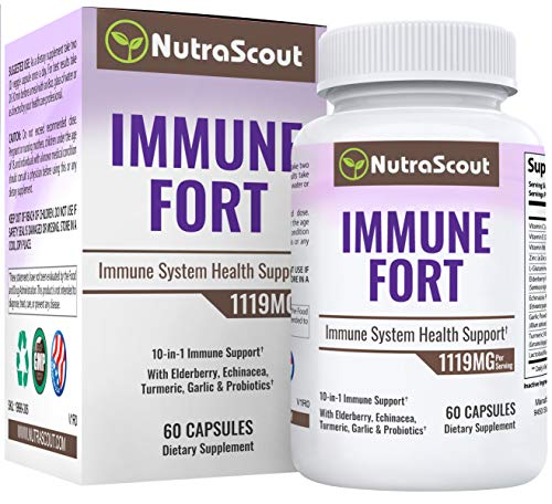 ImmuneFort Immune System Support | 10-in-1 Wellness Booster | Elderberry, Garlic, Vitamin C, Zinc, Turmeric & Probiotics | 60 Vegetable Capsules
