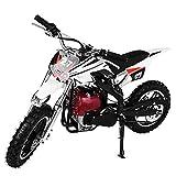 49CC 4-Stroke Gas Powered Mini Dirt Bike Off Road Vehicle Motorcycle for Kids Teens, Dual Disc Brake, Twist-Grip Variable (Red)