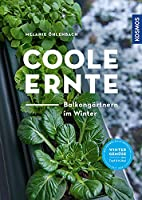 Coole Ernte: Balkongaertnern im Winter