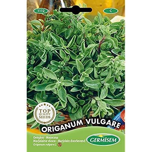 Germisem Origanum Vulgare Semi di Poiree 1 g