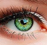 ELFENWALD farbige Kontaktlinsen, 3-Monatslinsen, besonders natürlicher Look, maximaler Tragekomfort, SUPREME Serie, ohne Stärke, 1 Paar weiche Farblinsen ohne Zusatzbehälter (Grün) -