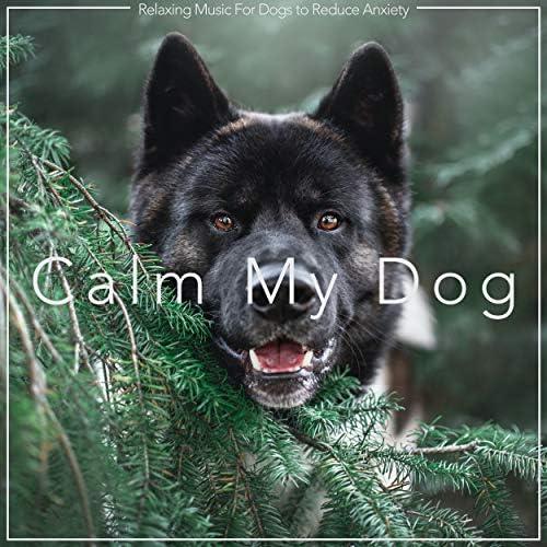 Dog Music Dreams, Dog Music & Relaxmydog