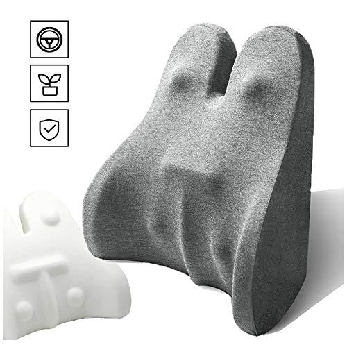 BDRSLX Cuscino Lombare Memory, Sostegno Ergonomico per la Schiena per Terapia della Postura per Sedia Ufficio Divano Sedie Cucina (Color : Light Gray)