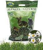BPS Heno Alfalfa Natural Hierba Fresca para Mascotas Pequeñas 2 Modelo Elegir (Heno Alfalfa+Manzanilla 600/650g) BPS-35455