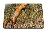 22cmx18cm マウスパッド (キツネ草ジャンプシュート) パターンカスタムの マウスパッド