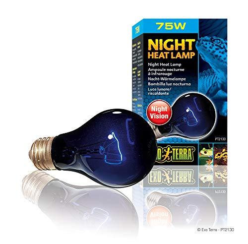 Exo Terra Night-Glo Moonlight A19 Lamp Watt: 75 W