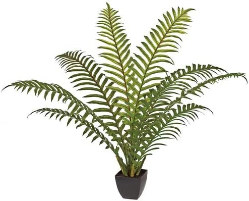 4 Foot We OFFer at cheap prices Potted Bush Sword Palm Indianapolis Mall