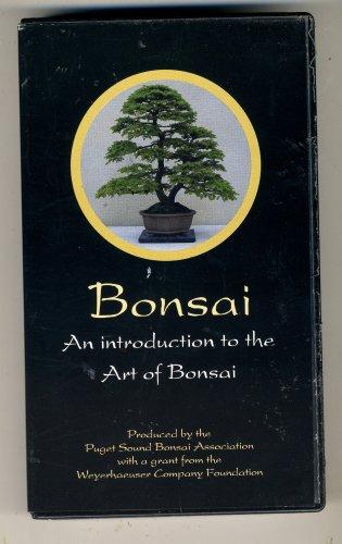 bonsai an introduction to the art of bonsai