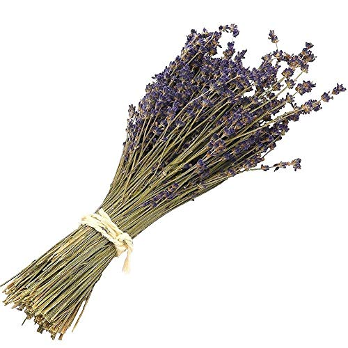 Natural Dried Lavender Bundles - Freshly Harvested Lavender Bunch Royal Velvet Decorative Flowers Bouquet for Wedding DIY Home Party (Lavender-120g)
