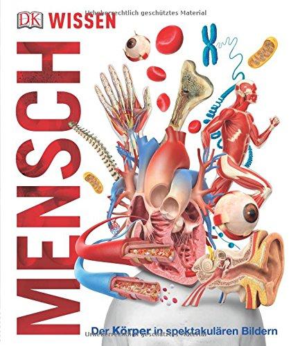 Wissen - Mensch: Der Körper in spektakulären Bildern