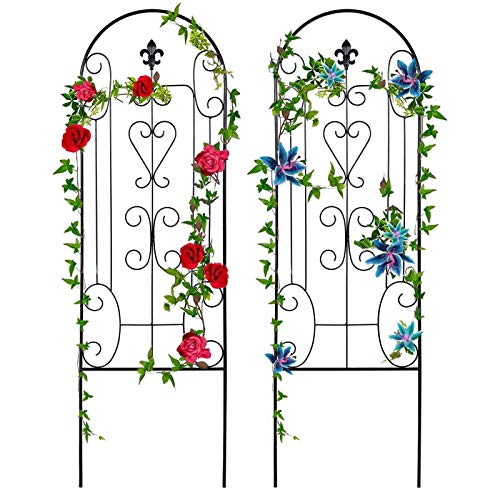 Amagabeli 2 Pack Garden Trellis For Climbing Plants 60' X 18' Black Iron Potted Support Vines Metal Wire Plant Trellis For Climbing Vegetables Flower Patio Roses Cucumbers Clematis Pots Supports GT05