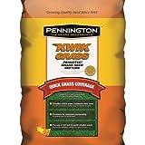PENNINGTON SEED Pennington 100086246 Seed Grass Mix