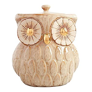 Vintage Gold Metallic Reactive Glaze Owl Cookie Jar