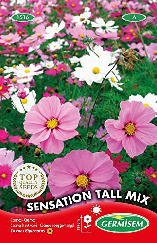 Germisem Sensation Tall Mix Semillas de Cosmos 2 g (EC1516)