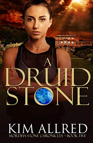 A Druid Stone: A Time Travel Romance Adventure: 5 (Mórdha Stone Chronicles)