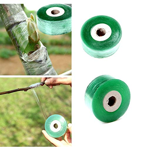 Buy Discount Best Design 2cm X 100m 1 Roll Grafting Tape Garden Fruit Tree Secateurs Engraft, Tree R...