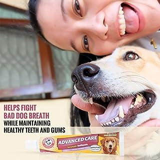 شراء Arm & Hammer Clinical Care Dental Gum Health Kit for Dogs