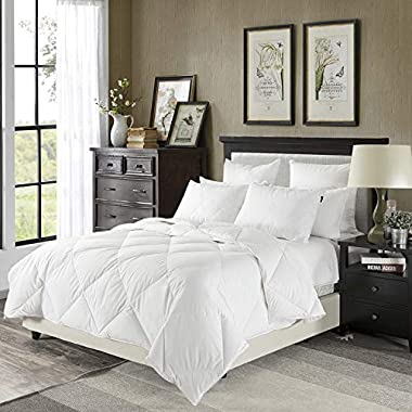 downluxe Lightweight Down Comforter(Queen,White)-Summer Weight Down Duvet Inserts,230 Thread Count 550+ Fill Power,100% Cotton Shell Down Proof with Tabs