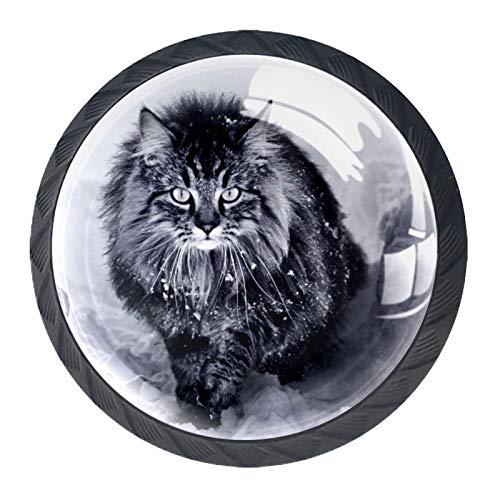 Manopole nere per mobili da cucina 4 pezzi per cassetti comò con viti Decorazioni per la casa rotonde - Un gatto delle foreste norvegesi nella neve