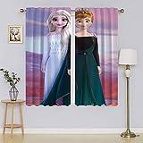 lacencn Cortinas para el hogar de la princesa Elsa Anna Frozen Filtrado de luz, cortinas para mantener la privacidad para el pasillo 55 x 72