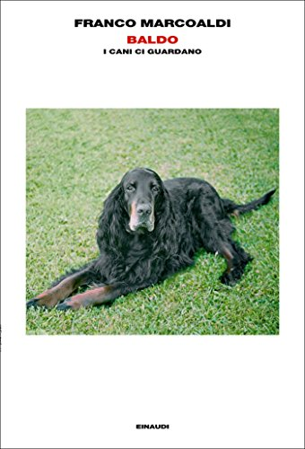 Baldo: I cani ci guardano (L'Arcipelago Einaudi Vol. 178)