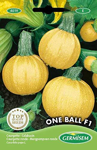 Germisem One Ball F1 Amarillo Calabacín 10 Semillas (EC4019)