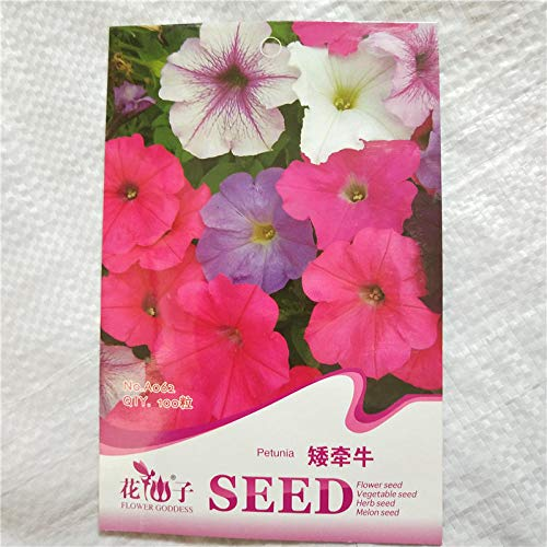 Aerlan Exotic Flower Seeds,Scented Flower Seeds,Morning glory color package landscaping seeds-A_10pcs