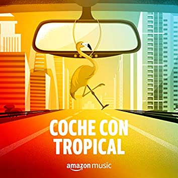 Coche con Tropical
