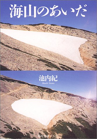 海山のあいだ (角川文庫ソフィア)の詳細を見る