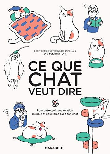 Ce que chat veut dire