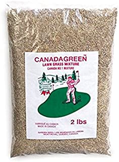 Canada Green Grass Lawn Seed - 2 Pound Bag