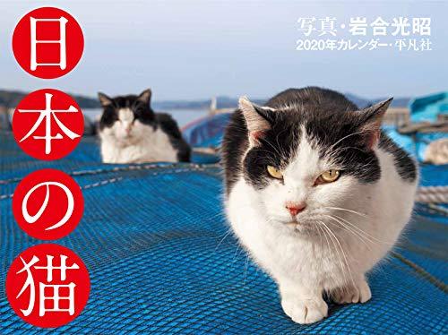 2020年カレンダー 日本の猫