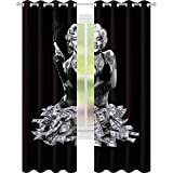 YUAZHOQI Curtains for Living Room New Licensed Queen Size Marilyn Monroe Mink P Blanket Money Shot W52 x L72 Window Drapes for Bedroom