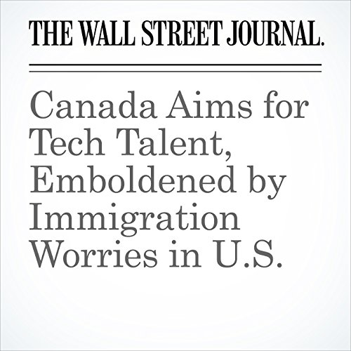 Canada Aims for Tech Talent, Emboldened by Immigration Worries in U.S. copertina