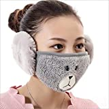 WKSNI Mund Maske Nette Frauen Ohr Schützende Mundohrenschützer Anti Staub Winter Masken Mädchen Anti Haze Baumwolle Gesichtsmasken, Kaffee