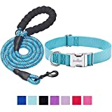 Best Collar For Dogs - beebiepet Classic Dog Collar with Strong Metal Buckle Review