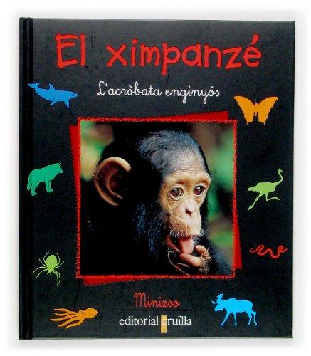 El ximpanzé